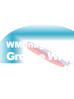 logo wmanager_blanc